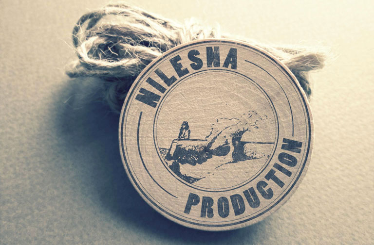 Logo Nilesna Production